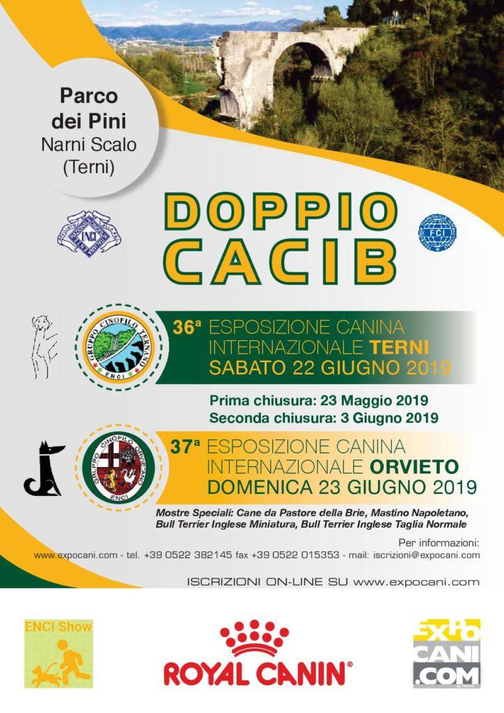 Expocani Calendario.37a Esposizione Canina Internazionale Gruppo Cinofilo Ternano